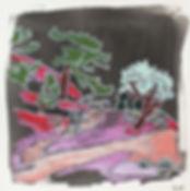 Lease-trees-path-2.jpg