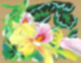 flower pastel painting copy copy.jpg