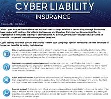 cyber liability insurance.png