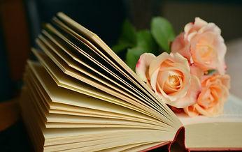 book-1769228_1920.jpg