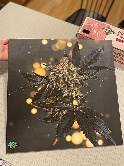20x20 Art