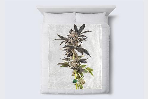 Sprouting Nug Blanket