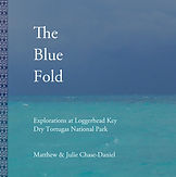 BLUE FOLD front COVER sm.jpg