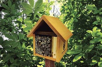 wild_bee_motel_-_crown_bees_full_width.j