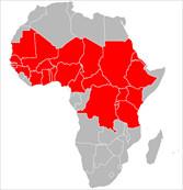Men C Vaccine Donated to Countries on the African Meningitis Belt
