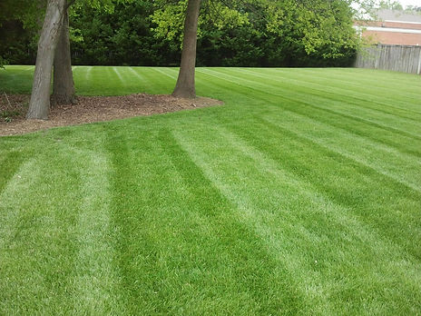 Lawn Stripes recent job.jpg