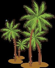 palmiers.png
