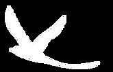 images_oiseau_blanc.png