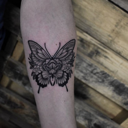 Nolan - Butterfly 2.jpg