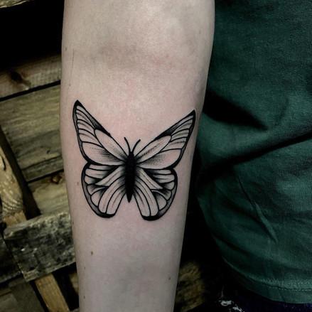 Nolan - Butterfly.jpg
