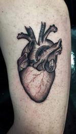 Nolan - Heart.jpg