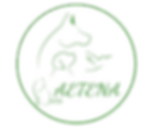 LOGO-AETENA (2).png