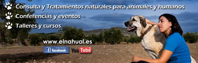 EL NAHUAL - Terapias Naturales para toda la familia: animales y humanos