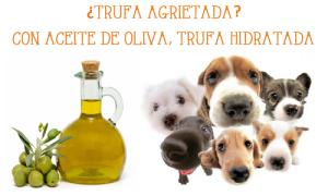 ¿TRUFA AGRIETADA? CON ACEITE DE OLIVA TRUFA HIDRATADA