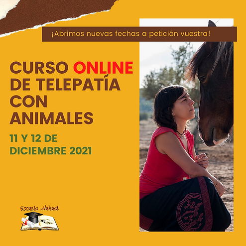CURSO ONLINE TELEPATÍA CON ANIMALES_DICIEMBRE21.png