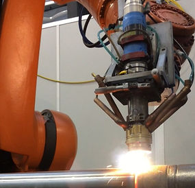 Robotic Integration with border_edited.j