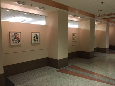 NIH Exhibit -Medicinal Botanical Paintings by Jennifer Duncan