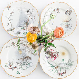 Wild Bird Limoges Plates 3.jpg