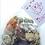 Thumbnail: Paquete de 6 Itacates