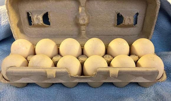 One Dozen Pasture Raised Duck Eggs