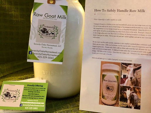 5 Reasons Why You Should Love Goat's Milk