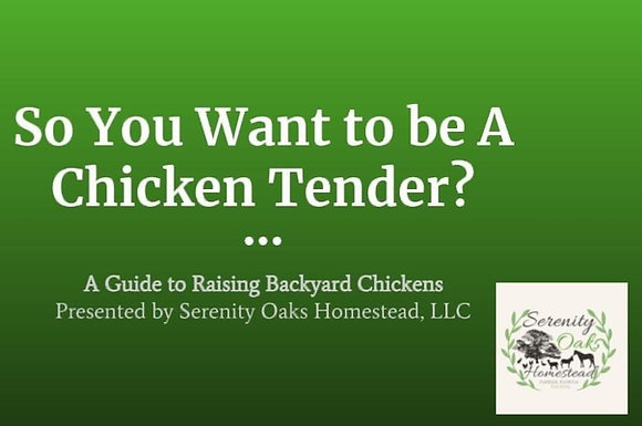 So You Want To Be A Chicken Tender: A Guide To Raising Backyard Chickens