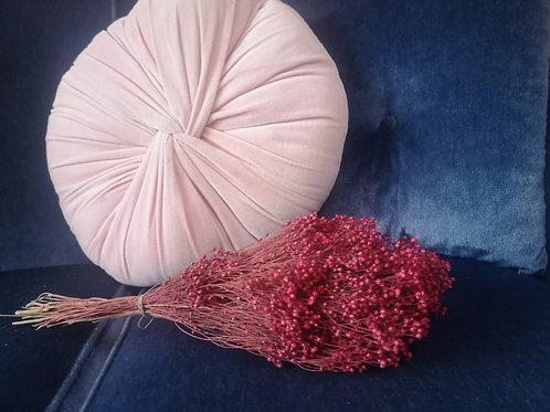 Broom rouge