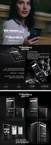 Blackberry-special.png