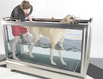 Underwater Treadmill Therapy gives the best recovery after injury or surgery.