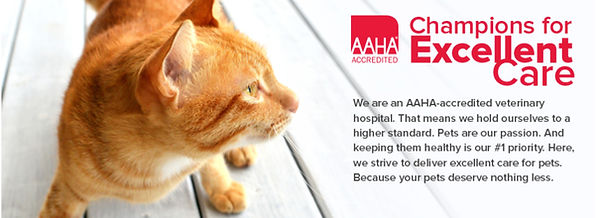 Because your pets deserve nothing less, we are AAHA accredited.
