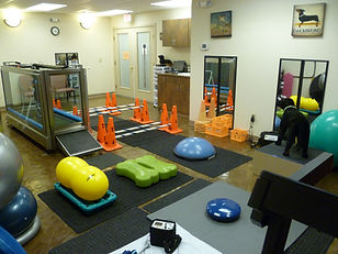 Rehab and exercise equipment specific for your dog at our center.