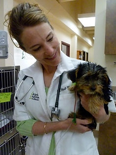 Dr. Heidi Wampler holds Lucky after he survived D-Con poisoning.