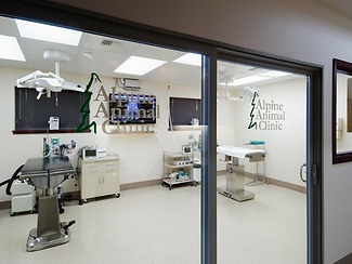 Surgical Suites at Alpine Animal Clinic.