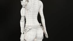 Cyborg Wire Frame Back