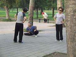 Цы Гун в парках Пекина