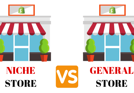 SHOPIFY DROPSHIPPING NICHE VS GENERAL STORE IN 2020
