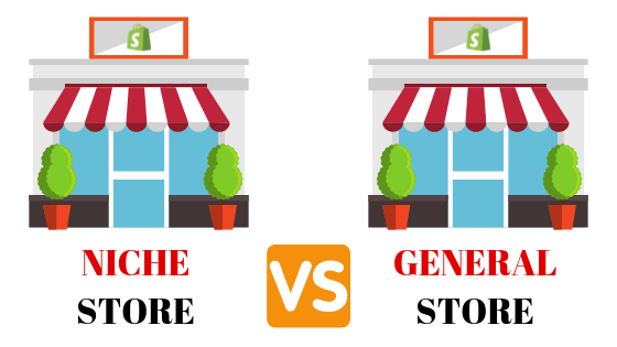 DROPSHIPPING NICHE VS GENERAL STORE 2019