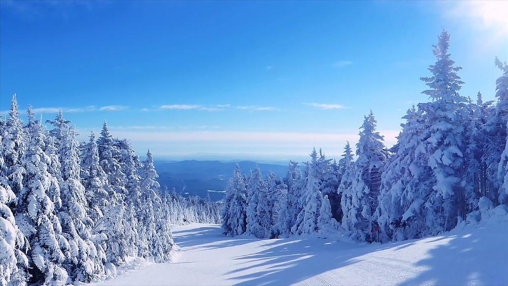 Okemo Mountain Skiing