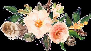 sccpre.cat-flower-border-png-413123.png