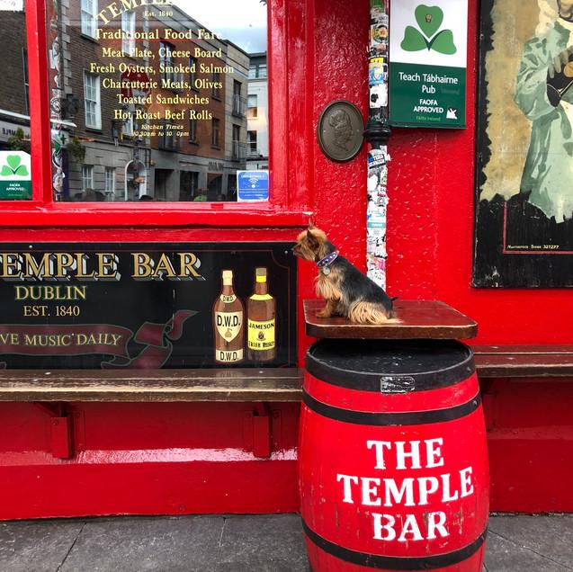 the temple bar in Dublin Ireland