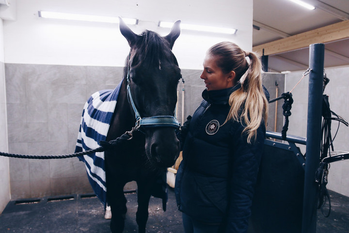 GET TO KNOW OUR HORSES