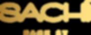 PS logo-04.png