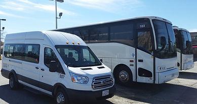 buses 2.jpg