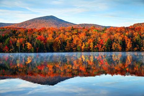 Fall Foliage 3.jpeg