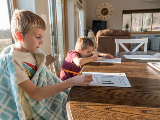 Home - Schooling and Working from home