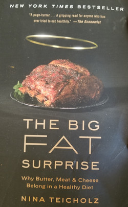 The Big Fat Surprise Cover