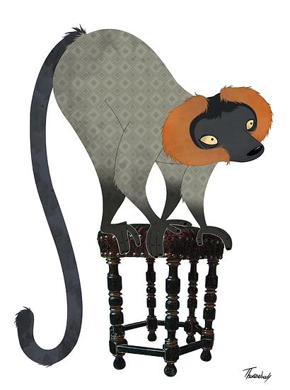 Stool Lemur.