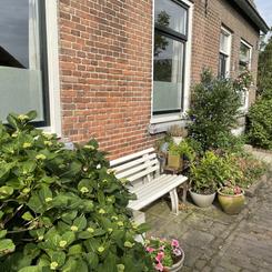 - natuurlijke tuin in Lith -