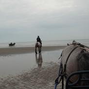ritje aan zee