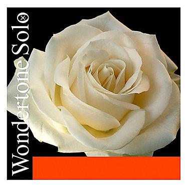Wondertone Solo - Pirastro